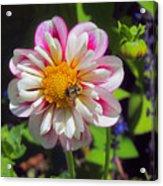 The Flower Keeper Acrylic Print