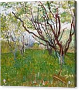 The Flowering Orchard Acrylic Print