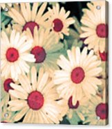 The Flowers At 5 Am Acrylic Print