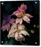 The Flowers Of Romance. Acrylic Print