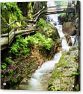 The Flume Gorge Lincoln New Hampshire Acrylic Print