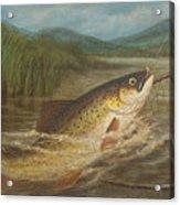 The Fly Fisherman's Net Acrylic Print