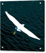 The Flying Egret Acrylic Print