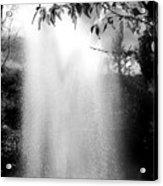 The Fountain  Acrylic Print