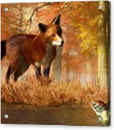 The Fox And The Turtle Acrylic Print