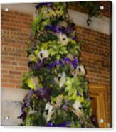 The French Thistle Tree Fashions For Evergreens Hotel Roanoke 2009 Acrylic Print