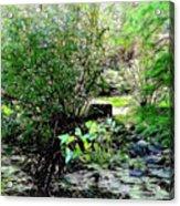The Frog Pond Acrylic Print