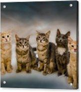 The Gang Acrylic Print