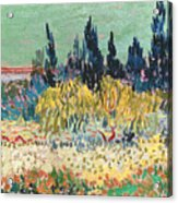 The Garden At Arles  Acrylic Print by Vincent Van Gogh
