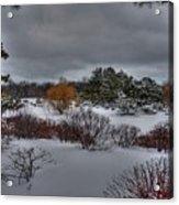 The Garden In Winter Acrylic Print by David Bearden