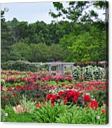 The Garden Of Bloom Acrylic Print