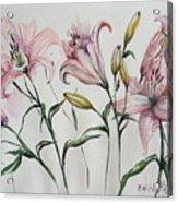 Gentle Flowers Acrylic Print