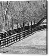 The Geometry Of Spring - Paint Bw Acrylic Print