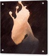 The Ghost Of Brackish Lake Acrylic Print