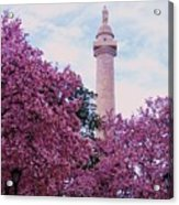 The Glory Of Spring In Mount Vernon Place, Baltimore Acrylic Print