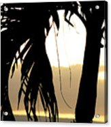The Glow Of Maui Acrylic Print