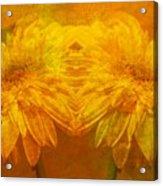 The Gold Mirror Acrylic Print