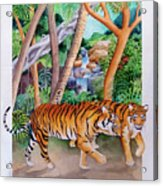 The Gold Of The Tigers Acrylic Print