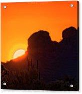 The Golden Light Of The Sonoran Desert  Acrylic Print