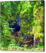 The Gorge In The Wood Acrylic Print