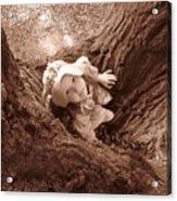 The Grand Oak Acrylic Print by Catherine Natalia  Roche