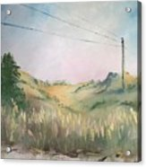 The Grass Acrylic Print
