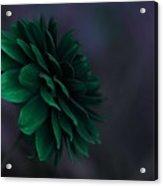 The Green Flower 2 Acrylic Print