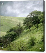 The Green Hills Of Home Acrylic Print