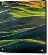 The Green Waves Of Palouse Wa Dsc05032  Acrylic Print