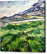 The Green Wheatfield Behind The Asylum Acrylic Print by Vincent van Gogh