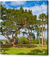 The Grounds Of The Kingsley Plantation Acrylic Print