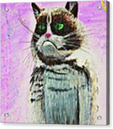 The Grumpy Cat From The Internets Acrylic Print