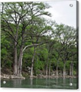 The Guadalupe River Acrylic Print