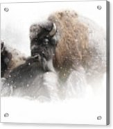 The Guardian II Falling Snow Acrylic Print