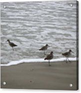 The Gulf In Shades Of Gray - One Opposed Acrylic Print