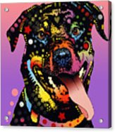 The Happy Rottie Acrylic Print by Dean Russo