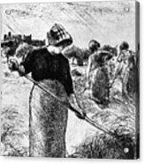 The Hayymaker Camille Pissarro Acrylic Print