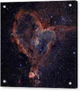 The Heart Acrylic Print