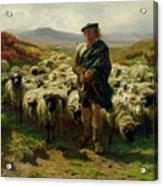 The Highland Shepherd Acrylic Print by Rosa Bonheur