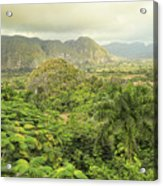 The Hills Of Vinales Acrylic Print