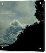 The Hillside Acrylic Print