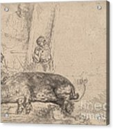 The Hog Acrylic Print
