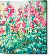 The Hollyhock Field Acrylic Print