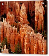 The Hoodoos In Bryce Canyon Acrylic Print