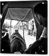 Horse And Carriage Acrylic Print