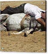The Horse Whisperer Acrylic Print
