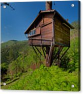 The House On The Tree - La Casa Sull'albero Acrylic Print