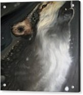 The Howling Acrylic Print
