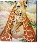 The Hug - Giraffes Acrylic Print