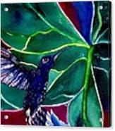 The Hummingbird And The Trillium Acrylic Print